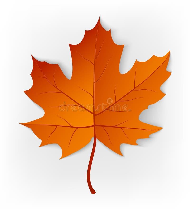 Het blad van de herfst De grootte van het beeld XXXL Blad op een witte achtergrond wordt geïsoleerd die De esdoornblad van de her royalty-vrije illustratie