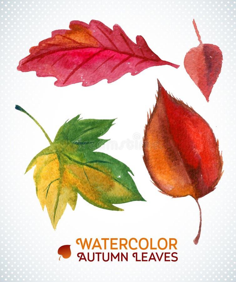 Het bladreeks van de waterverfherfst Vectorillustratieinzameling van waterverfhand getrokken bladeren royalty-vrije illustratie