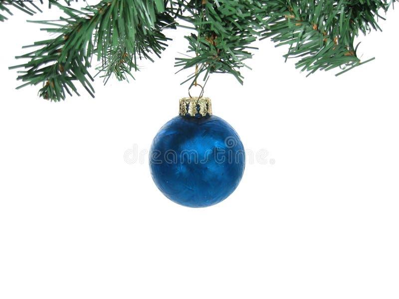 Het blauwe berijpte ornament van Kerstmis met geïsoleerdes takken stock afbeelding