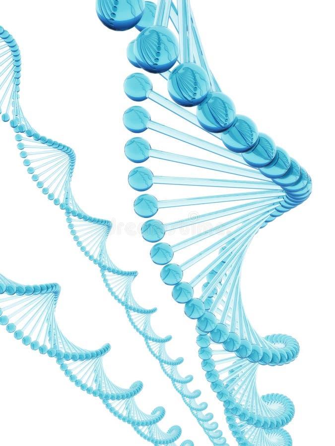 Het Blauwe Glas van DNA royalty-vrije illustratie