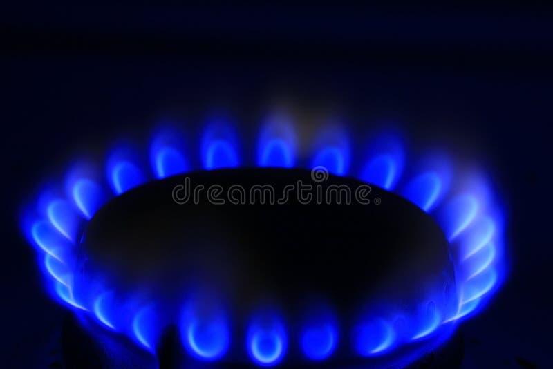 Het blauwe kooktoestel van het brandergas royalty-vrije stock foto's