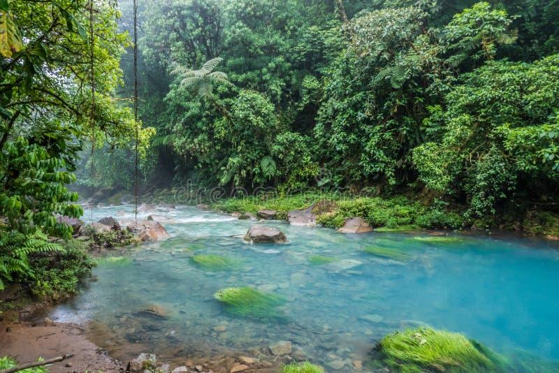Het blauwe zure water van Rio Celeste royalty-vrije stock foto