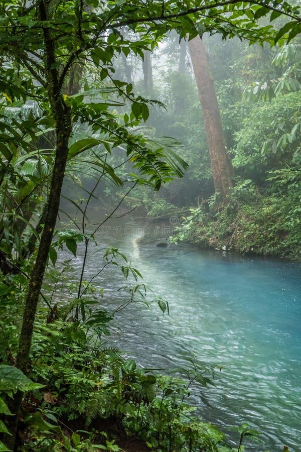 Het blauwe zure water van Rio Celeste, Costa Rica stock foto's