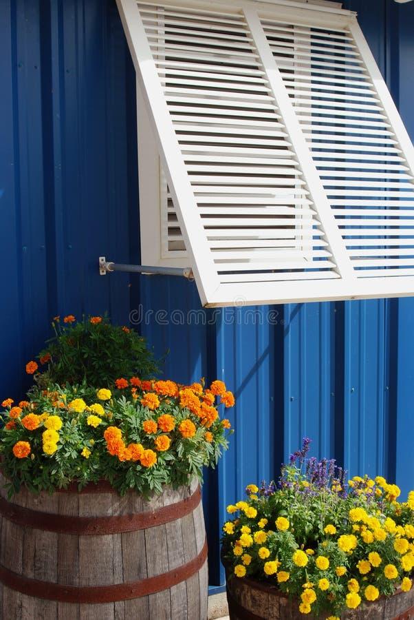 Het blind en de bloemen van het venster royalty-vrije stock fotografie