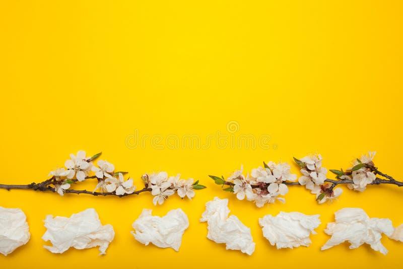 Het bloeien en allergie met een lopende neus, lege ruimte voor tekst stock afbeeldingen