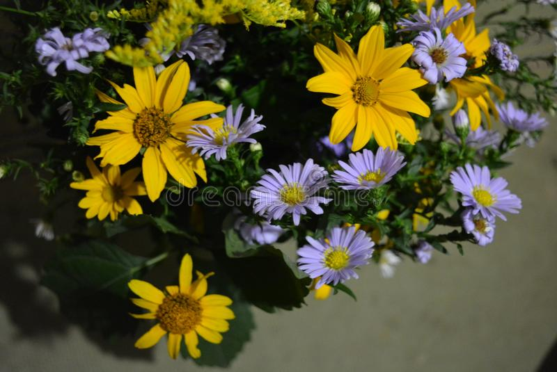 Het bloemboeket van mooie wilde Oekraïense wildflowers maakte met een ziel van het steppedeel van de Oekraïne royalty-vrije stock afbeeldingen