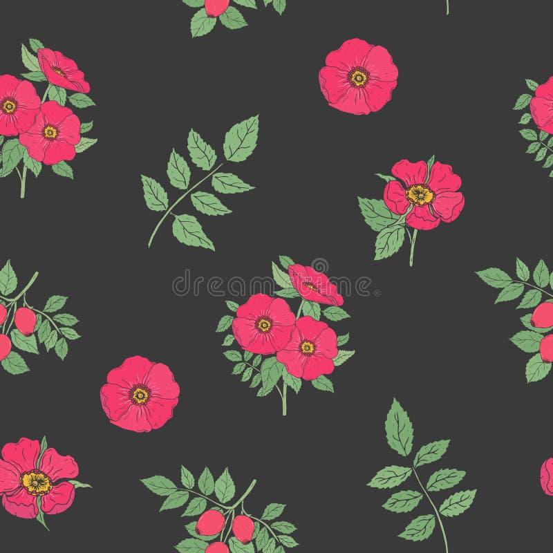 Het bloemen naadloze patroon met elegante die hond nam bloemen toe, stammen en bladerenhand in retro stijl op zwarte achtergrond  royalty-vrije illustratie