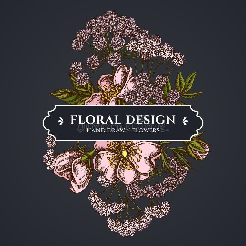 Het bloemenboeket donkere ontwerp met hond nam, valeriaan, engelwortel toe vector illustratie