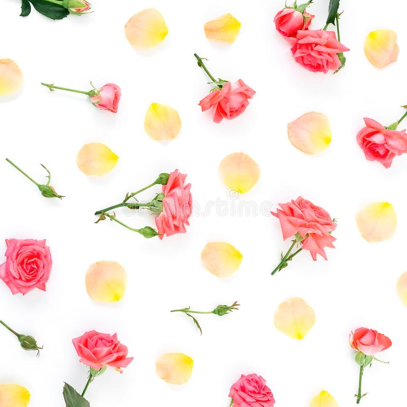 Het bloemendiepatroon van rode rozenbloemen wordt gemaakt en oranje nam bloemblaadjes op witte achtergrond toe Vlak leg, hoogste  stock fotografie