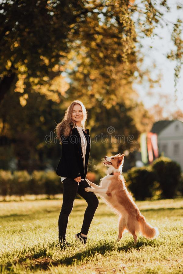 Het blonde meisje leidt haar hond border collie in groen park in zonneschijn op royalty-vrije stock foto