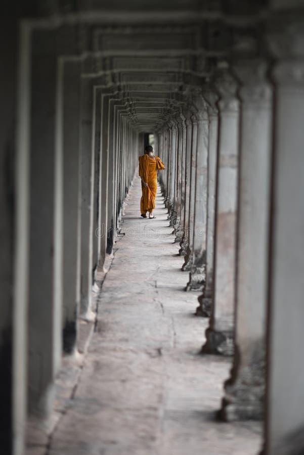 Het boeddhistische monnik lopen in de tempel van Angkor Wat, Siem oogst, Kambodja royalty-vrije stock afbeelding