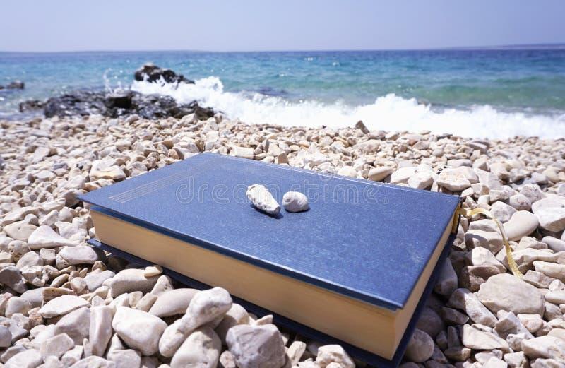 Het boek en de zeeschelpen op het in de zeekustvakantie en ontspannen concept royalty-vrije stock afbeelding