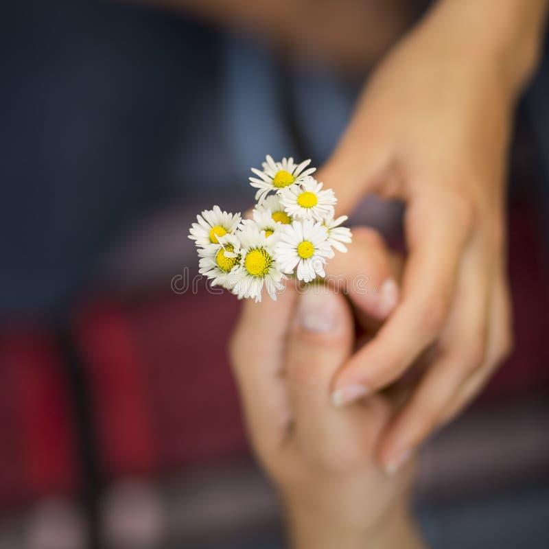 Het boeket van bloemen royalty-vrije stock foto's