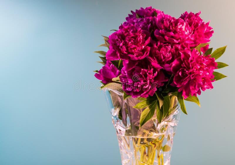 Het boeket van bloemen van pioenen is in een vaas royalty-vrije stock foto's