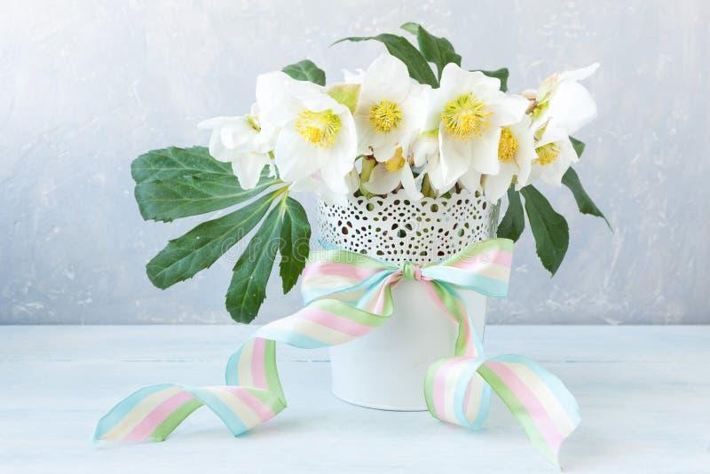 Het boeket van de close-upfoto A van de verse lente hellebore bloeit in een witte vaas stock foto