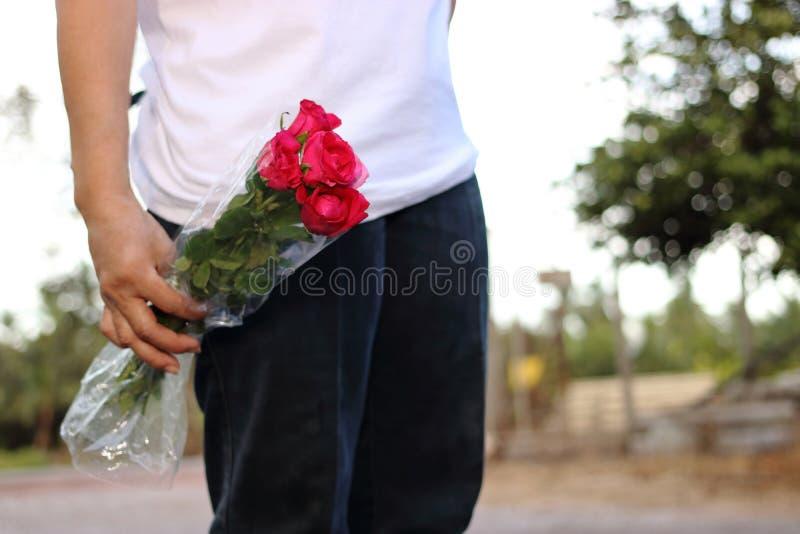Het boeket van de vrouwenholding van mooie rode rozen op aard bokeh achtergrond Romaans en zoet de dagconcept van Valentine ` s royalty-vrije stock foto's