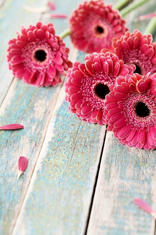 Het boeket van het Gerberamadeliefje voor moeder of van de vrouw dag Mooie bloemachtergrond Uitstekende stijl royalty-vrije stock foto's