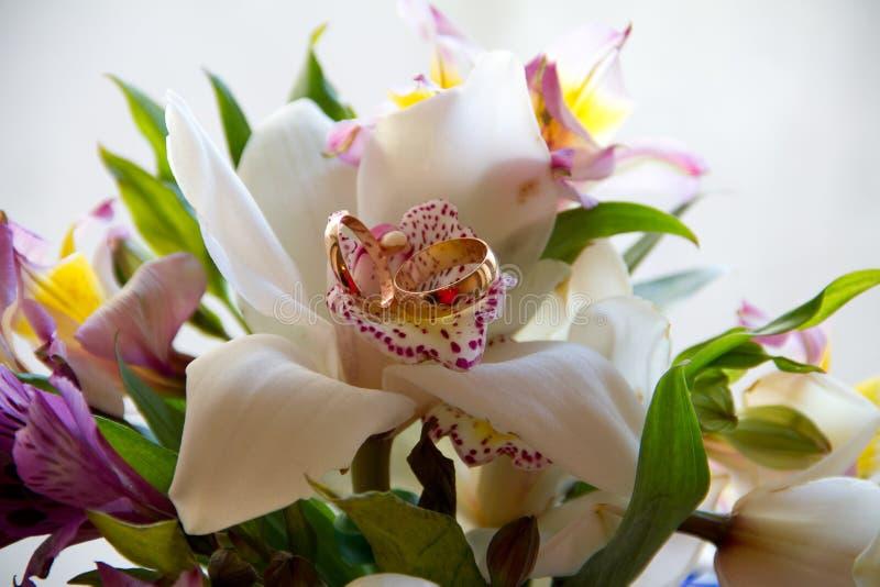 Het boeket van het huwelijk met ringen stock foto's
