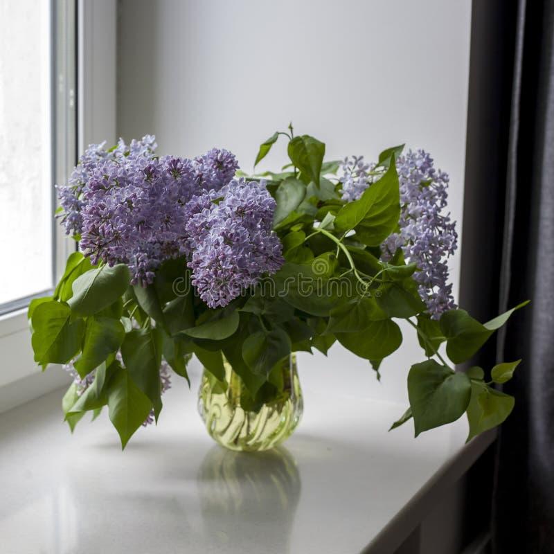 Het boeket van lilac takjes in een transparante kruik op witte stoel als decoratie van binnenland Het meisje zit op het venster stock foto's