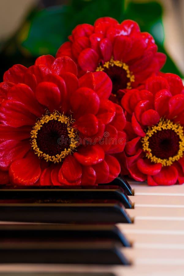 Het boeket van pianosleutels stock afbeelding