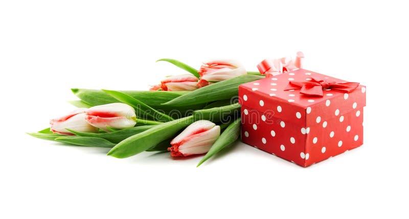 Het boeket van tulpen op witte achtergrond met een rood worden geïsoleerd dat doted stock afbeelding