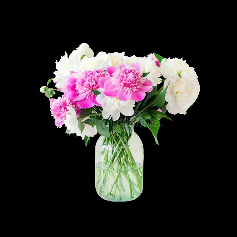 Het boeket van verse grote roze, witte en roompioenen in eenvoudige glaskruik op blik dient binnen in geïsoleerd op zwarte Vaas stock foto's