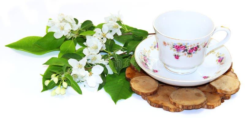 Het boeket van verse witte appel komt dichtbij een theepaar tot bloei van een sau royalty-vrije stock afbeeldingen