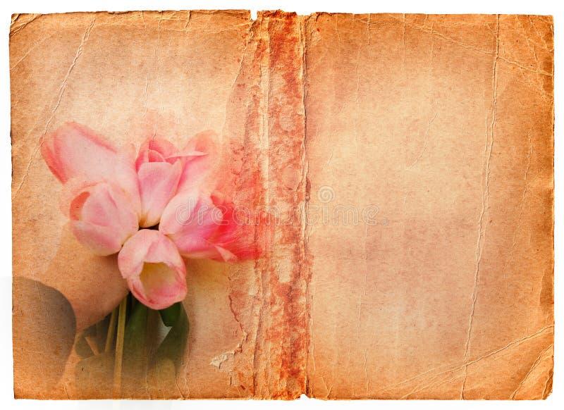 Het boekpagina van Grunge met roze tulpen royalty-vrije stock afbeelding