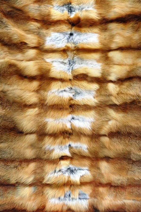 Het bont van de achtergrond vos textuur stock afbeeldingen