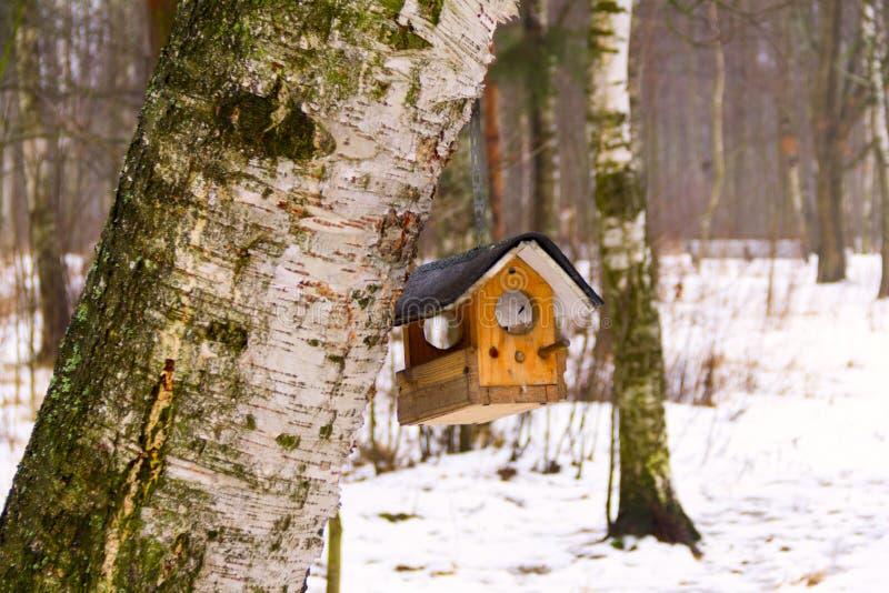 het boomhuis voor de vrolijke vogels, apartmen royalty-vrije stock afbeelding