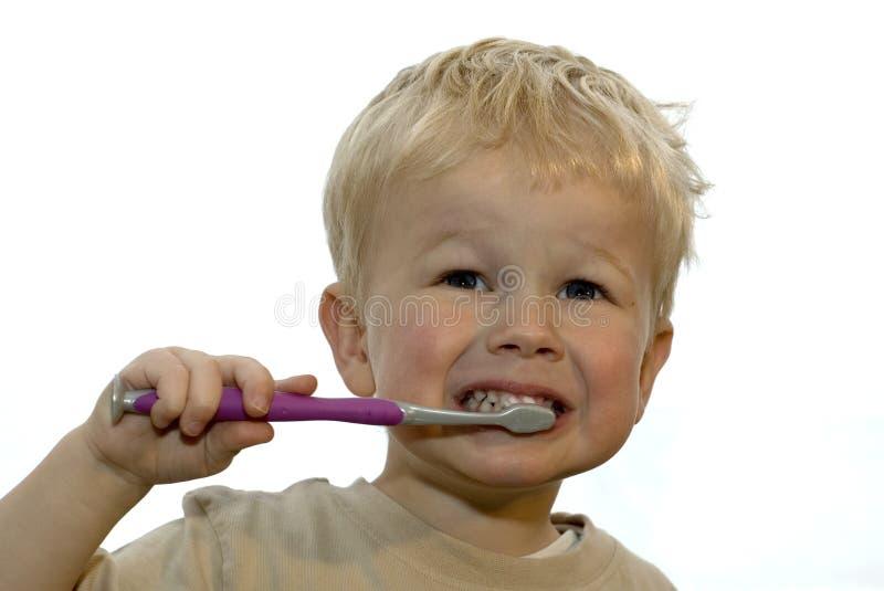 Het borstelen van het jonge geitje tanden royalty-vrije stock afbeelding
