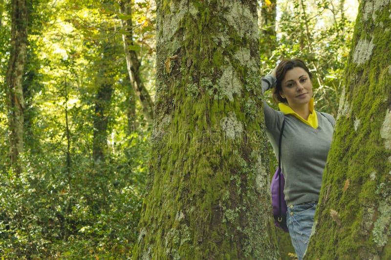 In het bos royalty-vrije stock fotografie