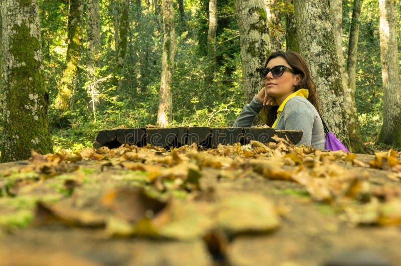 In het bos stock fotografie