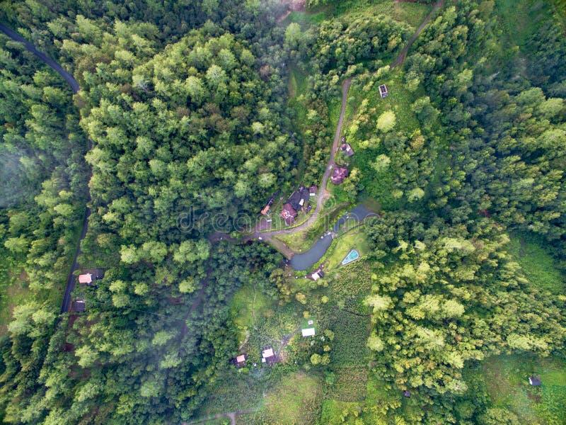 Het bos en de bergen van Puebla royalty-vrije stock afbeelding