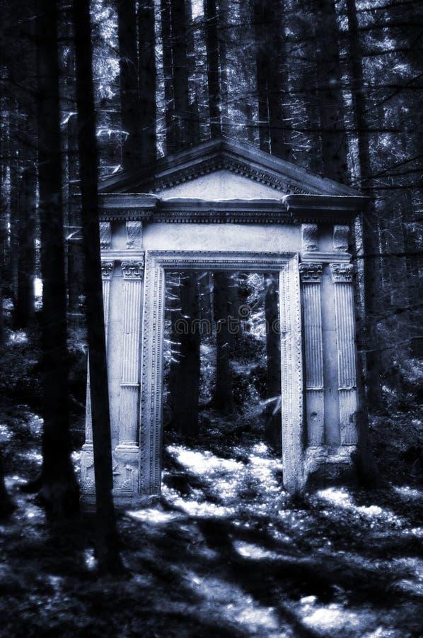 Het bos van de fantasie stock foto's