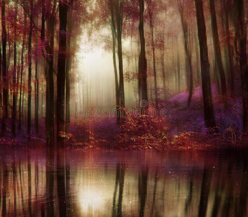 Het bos van de fantasieherfst stock foto