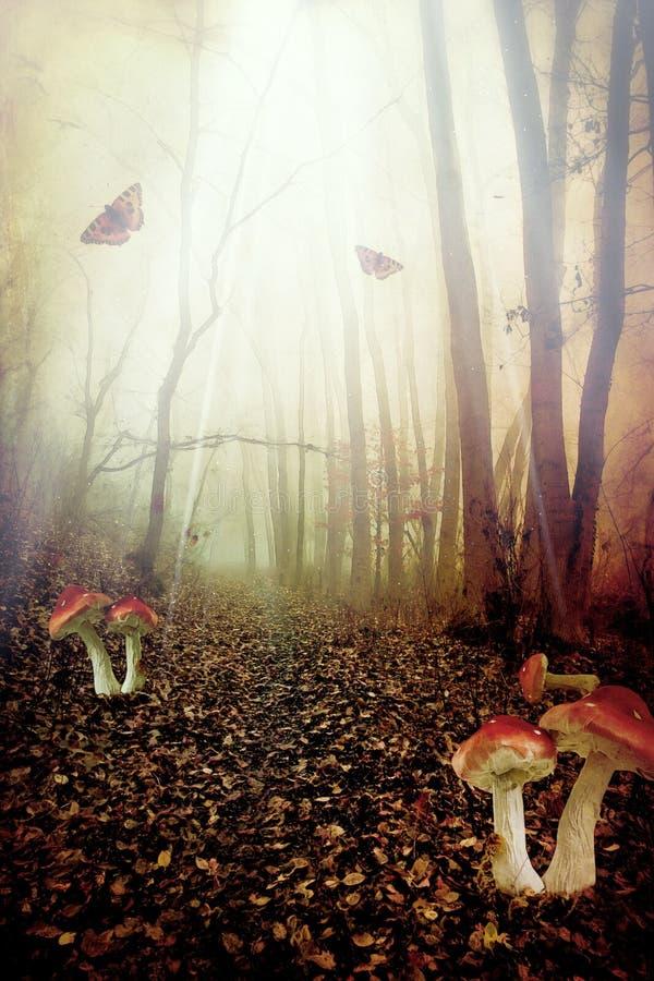Het bos van de fee stock illustratie