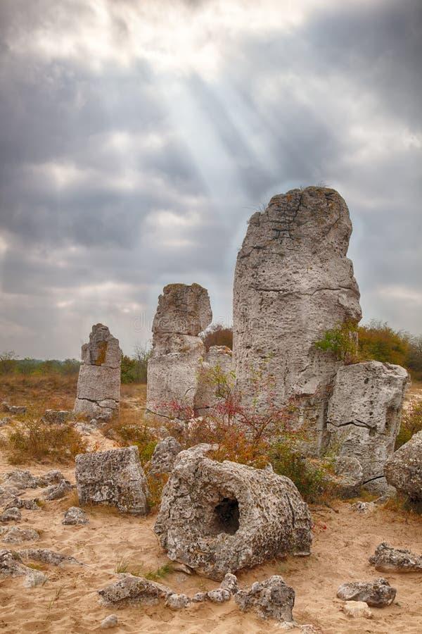 Het Bos van de steen dichtbij Varna, Bulgarije. Kamni van Pobity royalty-vrije stock foto's