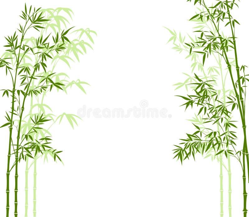 Het bos van het bamboe royalty-vrije illustratie