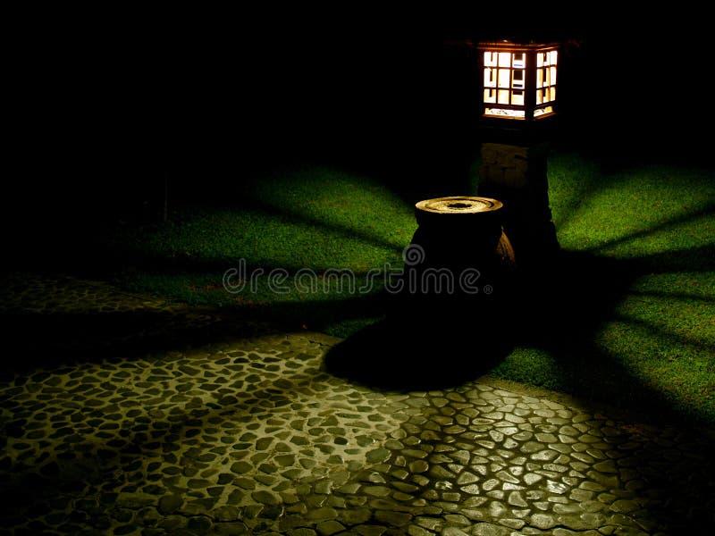 Het botanische Licht van de Nacht van de Tuin royalty-vrije stock afbeeldingen