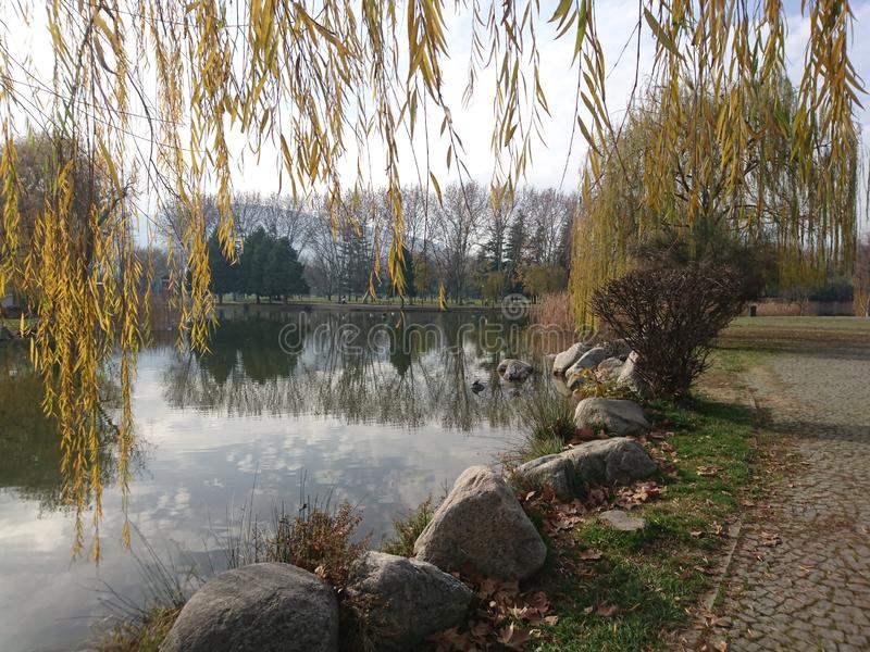 Het Botanische Park stock foto's