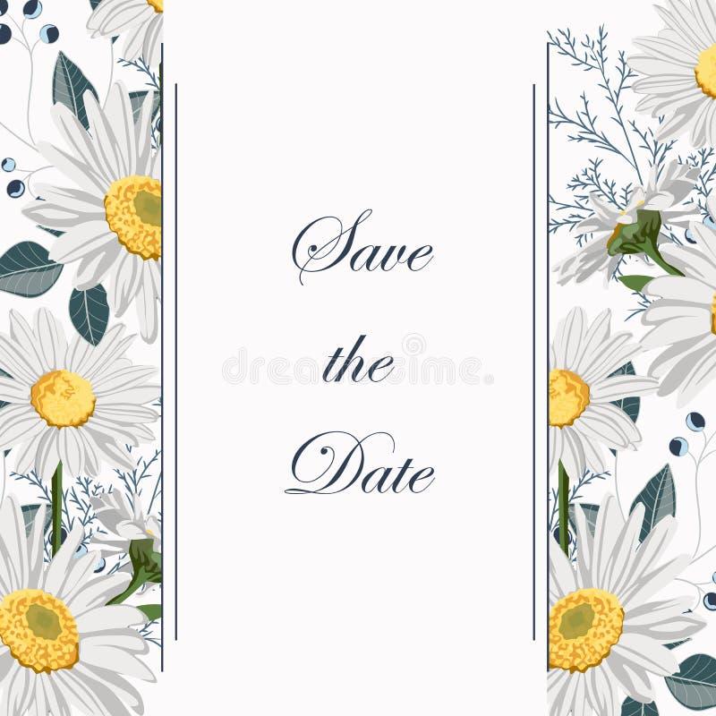 Het botanische van de de uitnodigingskaart van het de lentehuwelijk de de het malplaatjeontwerp, kamille en kruiden bloeien samen royalty-vrije illustratie