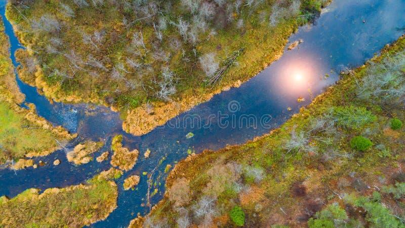 Het bovenaanzicht van het ecosysteem van de bosrivier en het meer op de weidevallei, de textuur van de bosaanzicht van bovenaf, d stock afbeeldingen