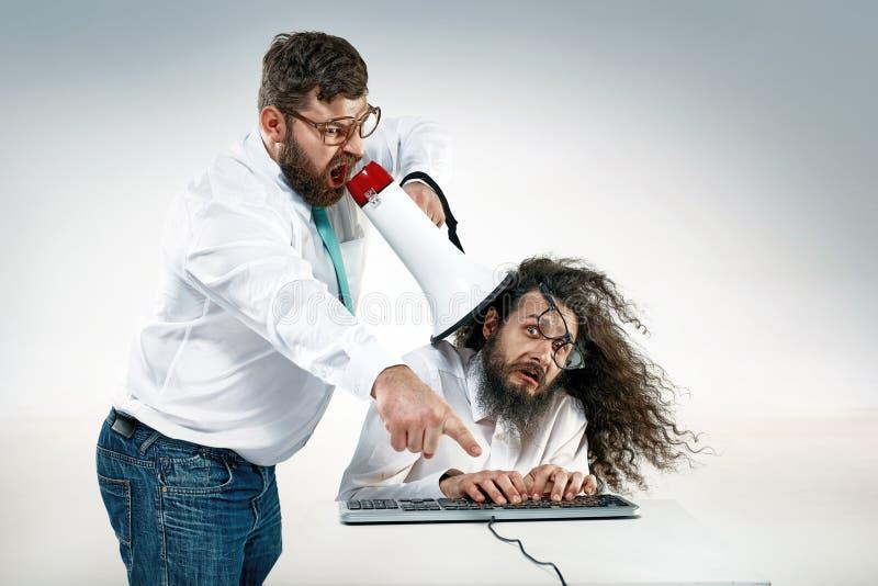 Het boze chef- schreeuwen aan een beambte stock fotografie