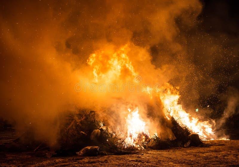 Het branden van afval en oude bomen royalty-vrije stock foto's