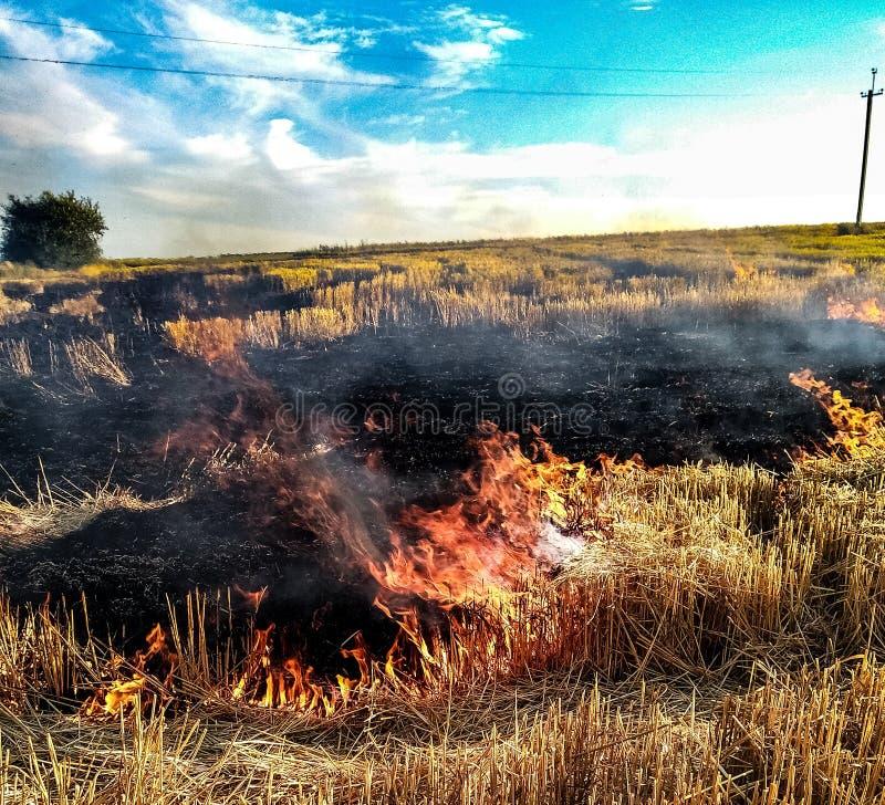 Het branden van de brand stock foto