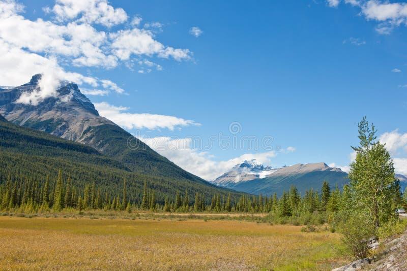 Het Brede rijweg met mooi aangelegd landschap van Icefield stock afbeelding