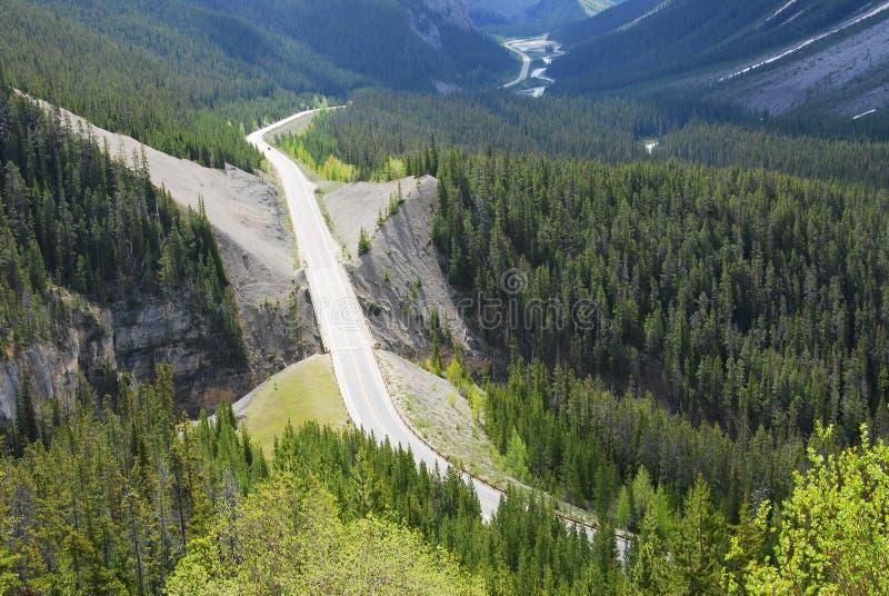 Het brede rijweg met mooi aangelegd landschap van Icefield in bossen stock fotografie