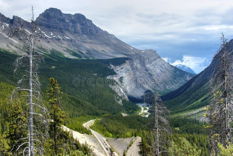 Het brede rijweg met mooi aangelegd landschap van Icefield dichtbij meer luise royalty-vrije stock afbeelding