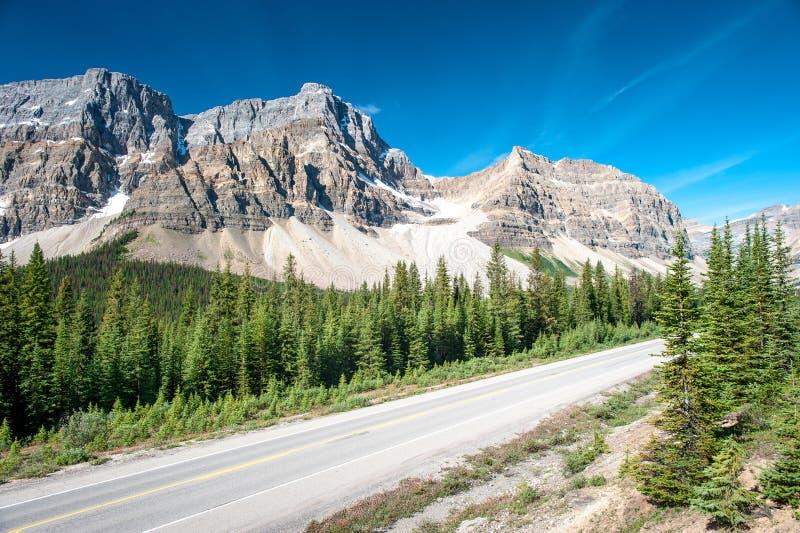Het Brede rijweg met mooi aangelegd landschap van Icefield in Nationaal Park Banff stock fotografie
